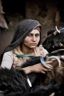This shepherdess, who holds very tight the goats she received during last year's distribution, is unknown to us. She lives in a Taliban infested village where NGOs' presence is not welcomed. In Afghanistan security is decreasing. 2010